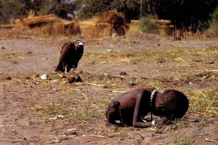vulture and the girl kevin carter